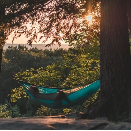 Picture of a Hammock: Father's Day 2021